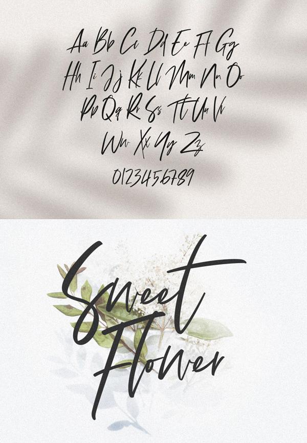 Refaline Script Free Font Letters