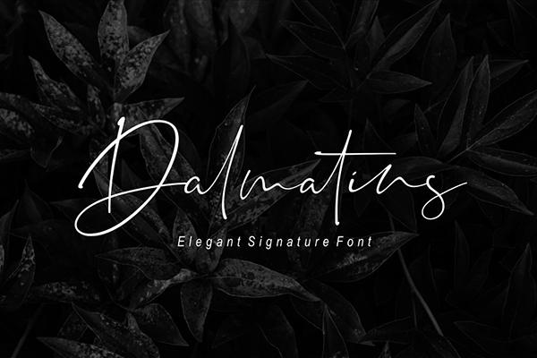 Dalmatins Elegant Signature Font