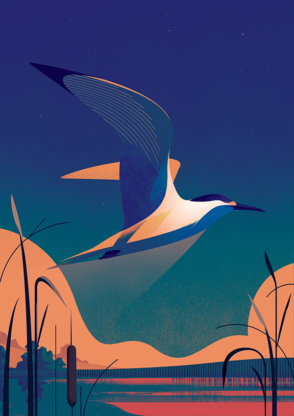 Amazing Illustration Art for Inspiration by Charlie Davis - 5