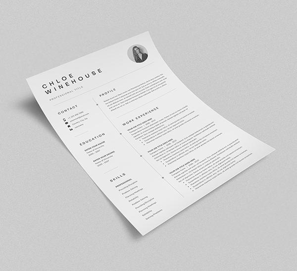 Free Isometric Resume Mockup - 2