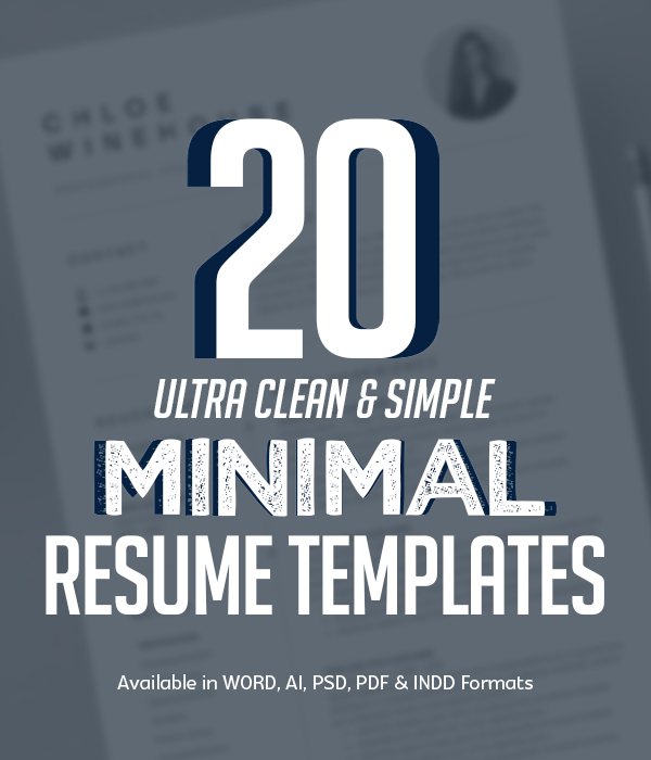20 Best Clean Minimal Resume Templates