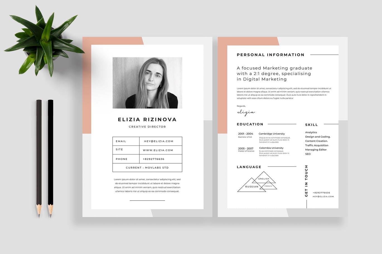 Resume CV Vol 21