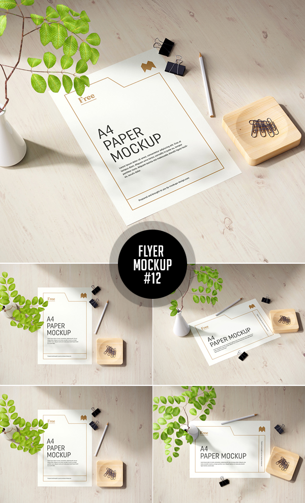 Best Free Flyer Mockups - 12