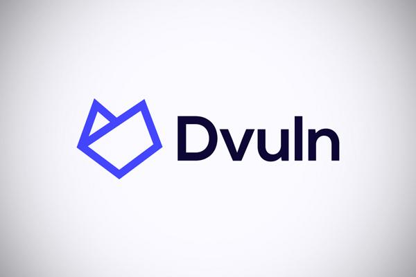 Dvuln Combination Logotype / Identity by Matis Branding