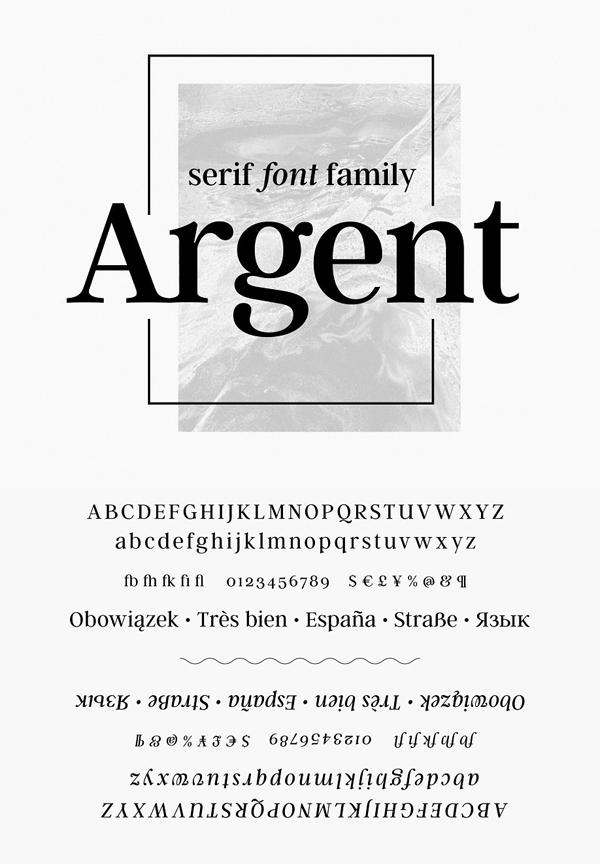 Expressive Serif Font