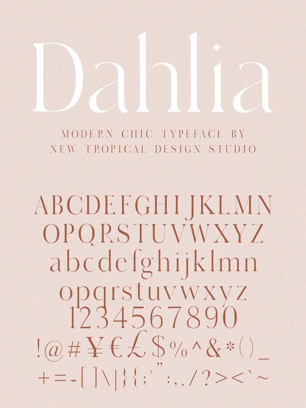 Dahlia - Modern Serif Font