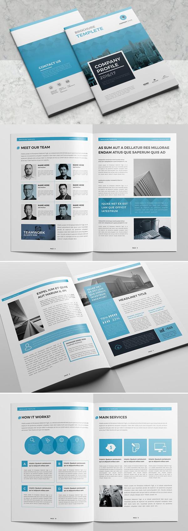 Blue Company Profile