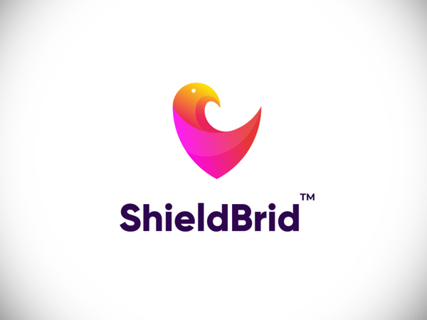 ShieldBrid branding concept