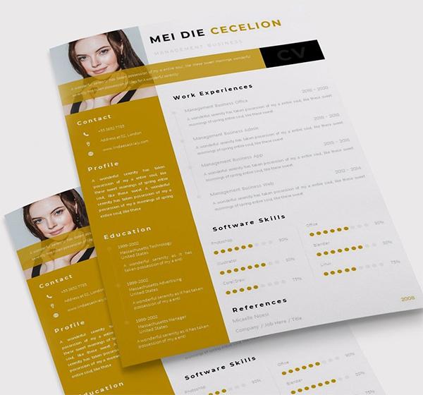 Moodest   CV & Resume