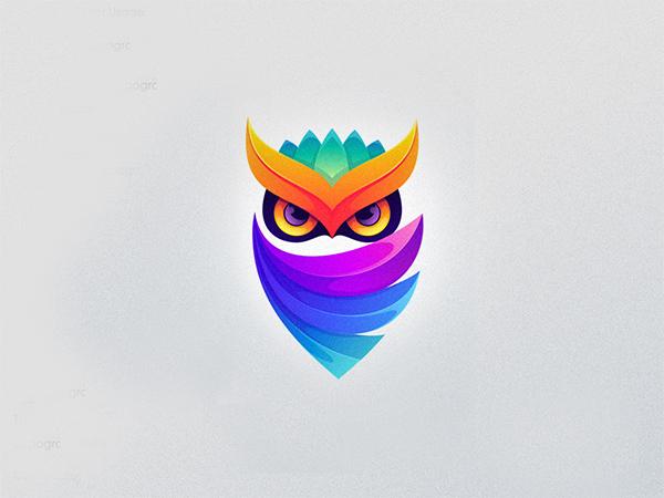 Colorful Own Logo Design