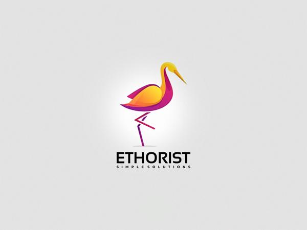 Ethorist Colorful Logo Design