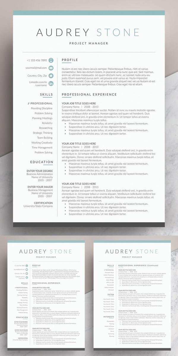 50 Best Resume Templates Of 2020 - 49