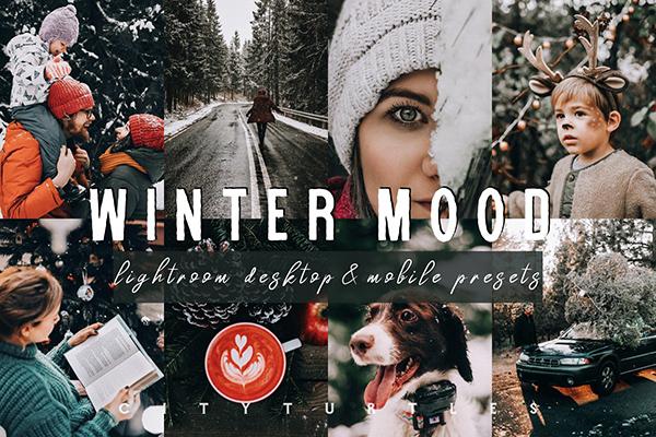 Moody WINTER MOOD Lightroom Presets