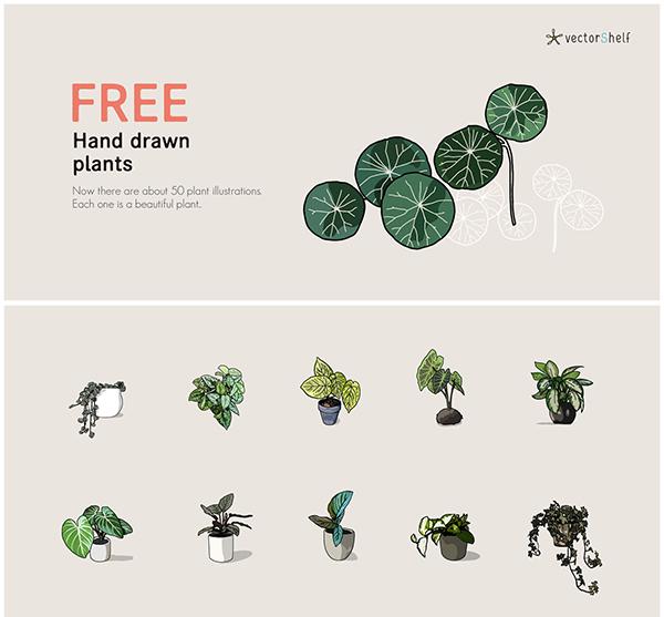Free Hand Drawn Plants
