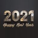 Post thumbnail of Happy New Year 2021