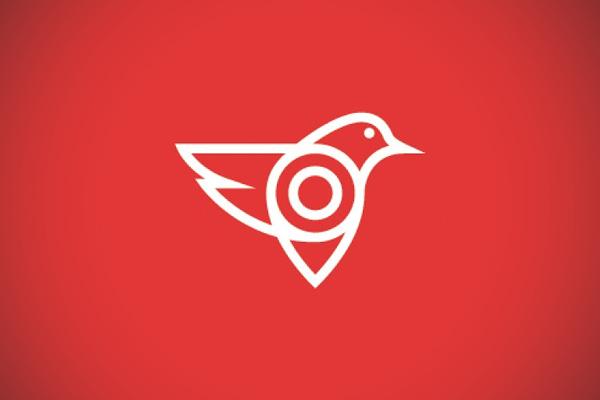 Pin Bird App Logo