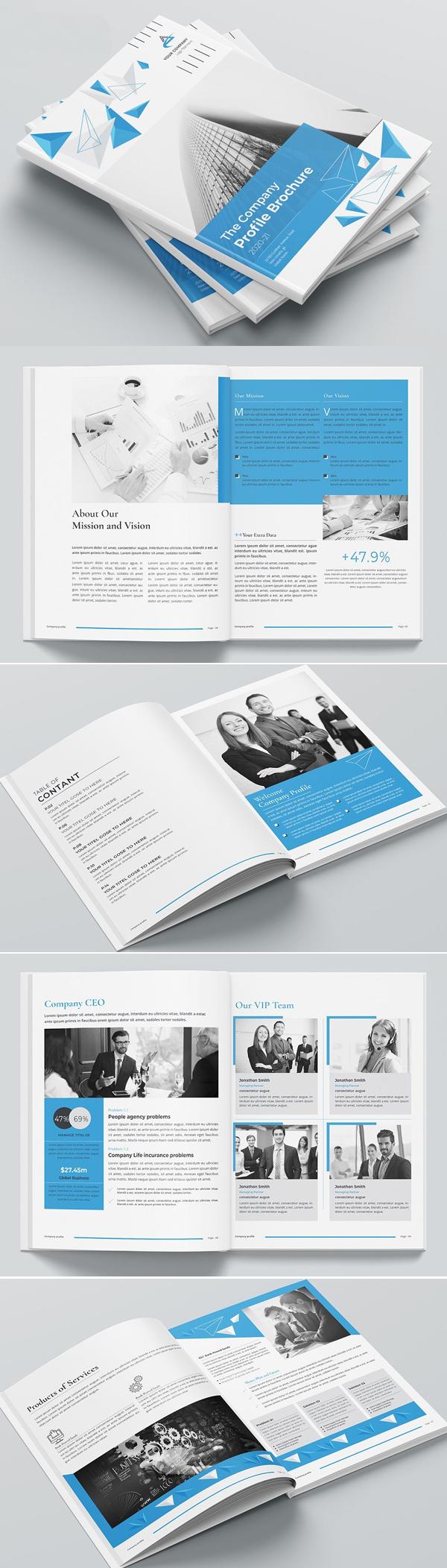 Company Profile Brochure 2020-21