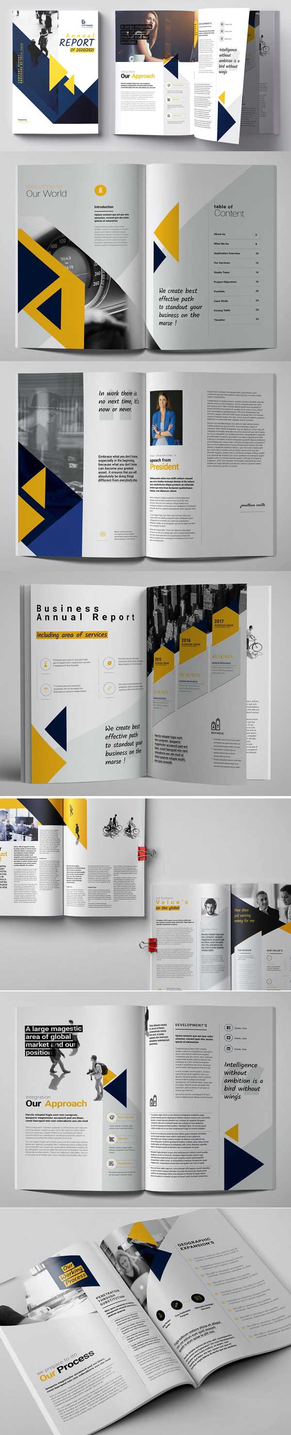 Stunning Annual Report Brochure Template