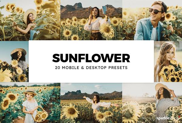 20 Sunflower Lightroom Presets & LUT