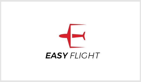 Easy Flight Logo Design Concept by Nasir Uddin