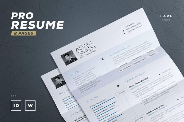 Pro Resume/Cv Font