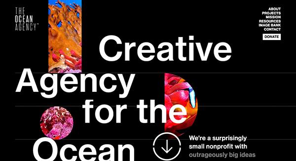 Award Winning Website Design Examples 2021 - 6