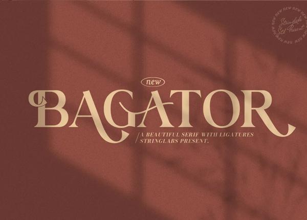 Bagator - Classic Serif Font