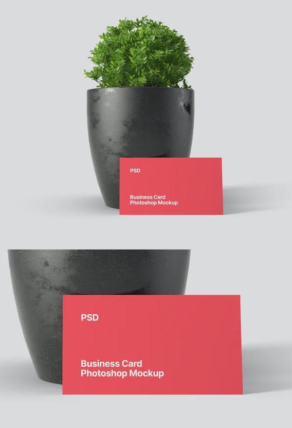 Simple Business Card Mockup