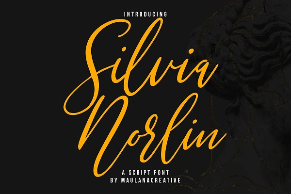Silvia Norlin Beauty Signature Font